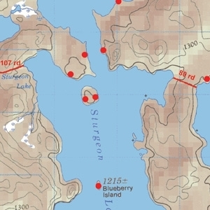 McKenzie Map 44 - Soho, Kasakokwog and Oriana Lakes
